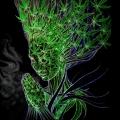 Herb Spirit